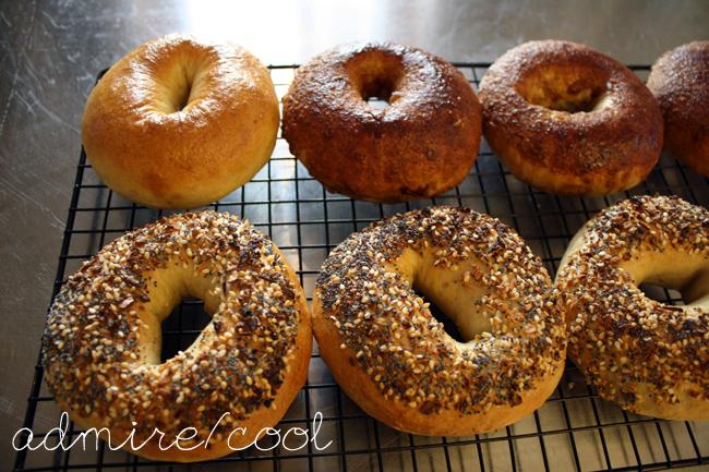 everything, plain, and cinnamon sugar bagels