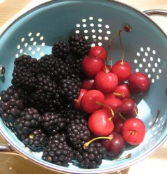 blackberries and cherries