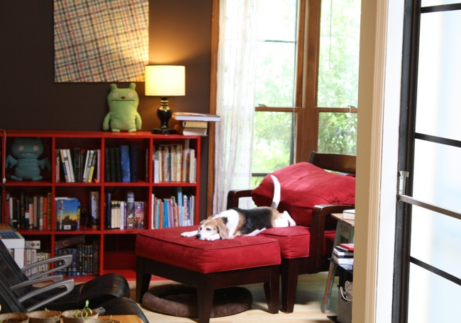red cubbies (beagle not included)