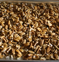 freshly shelled Georgia pecans