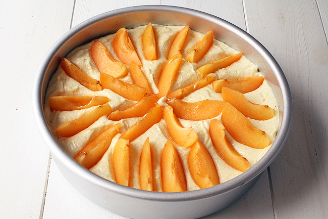 almond-cornmeal batter with sliced apricots, ready to be baked