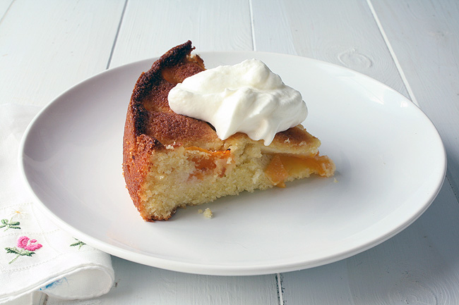 schmexy apricot cake, from the side